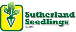 Sutherland-Seedlings-logo